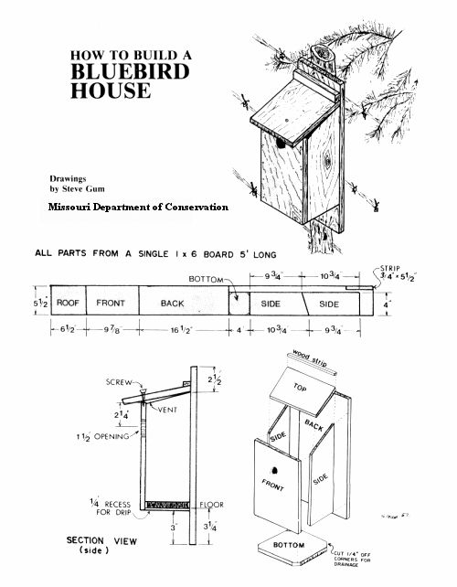 281 best fuglekasser tegninger images on pinterest for Song bird house plans