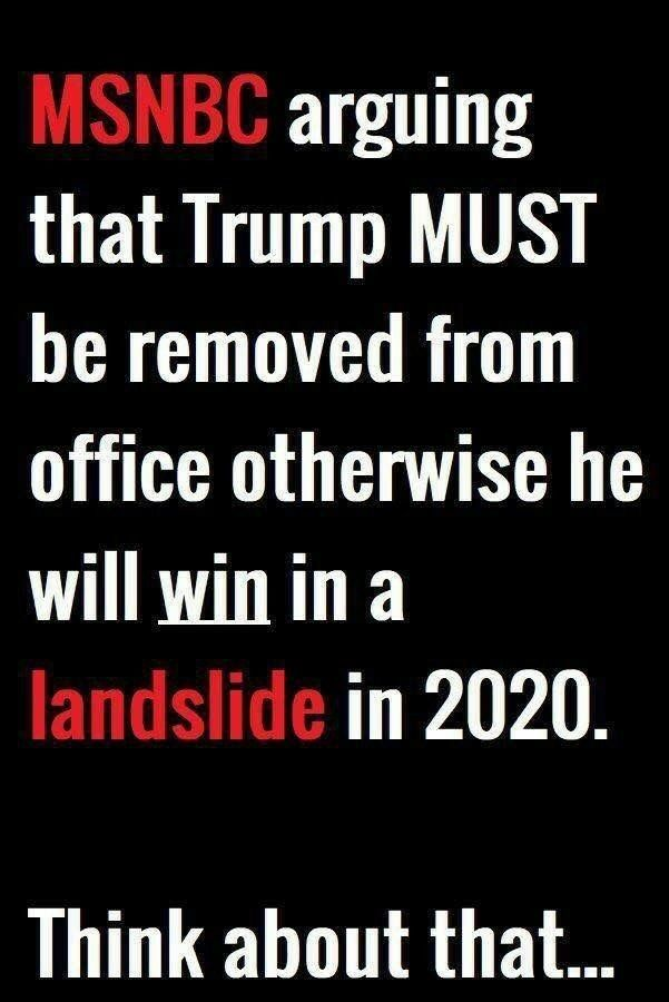 Image result for trump will win in 2020 by a landslide