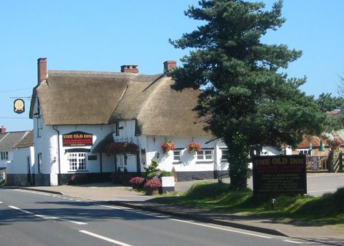 The Old Inn at Kilmington - Dog friendly and does lunch and dinner. Great food with very generous portions. Dogs welcome in the front bar and the garden.