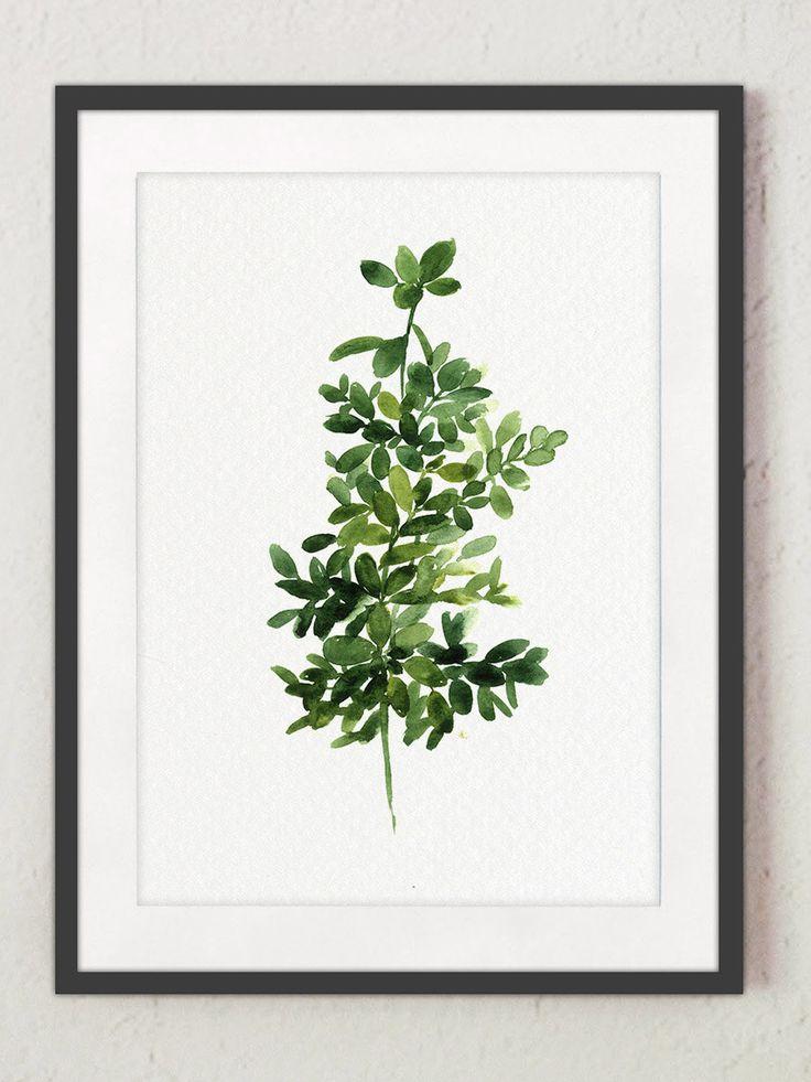 25 Best Ideas About Herbs Illustration On Pinterest