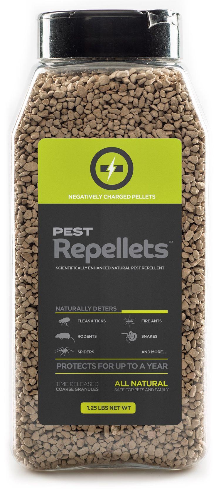 Natural Snake Repellent Safe For Dogs