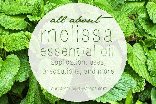 24+ Uses and Benefits of Melissa Essential Oil (Lemon Balm), via SustainableBabySteps.com