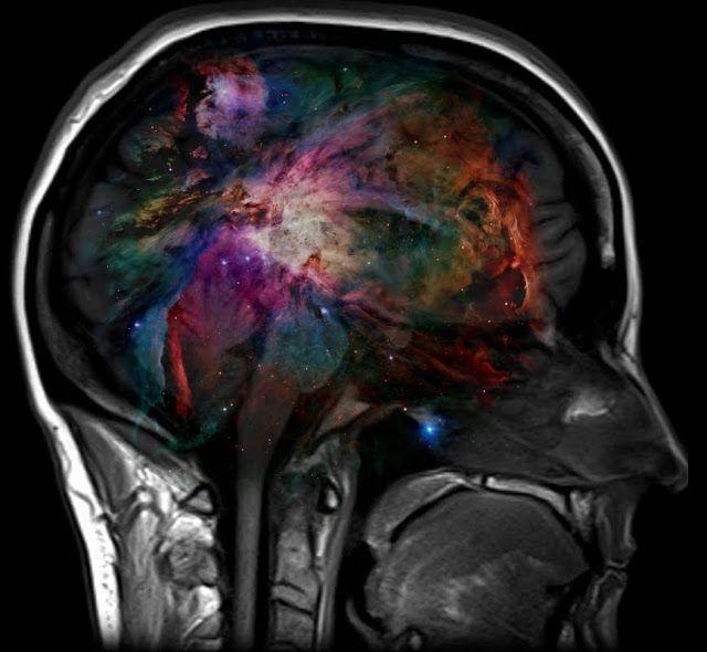 H επίφυση είναι ένας αδένας στο κέντρο προς το πίσω μέρος του εγκεφάλου, «άχρηστος» κατά την mainstream επιστήμη, αφού υποτίθεται πως δεν έχει βρει τη χρησιμότητά του. Τα λαμόγια όμως τη γνωρίζουν καλά… Είναι η «ασύρματη σύνδεσή» μας με όλα αυτά που τώρα (στην περιορισμένη μας συνειδητότητα) δεν μπορούμε να αντιληφθούμε η να προσλάβουμε. Ο …