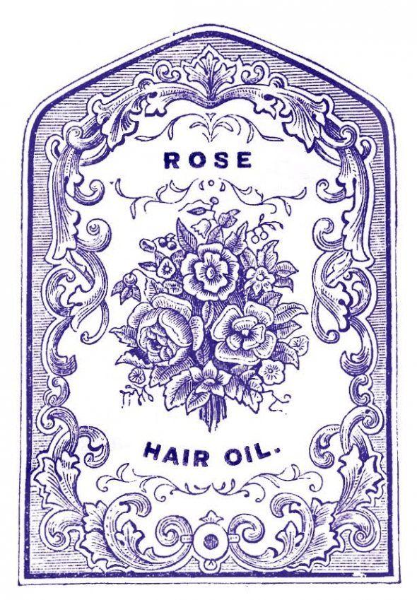 Rose hair oil label: Vintage Labels, Hair Oil, Clip Art, Graphics Fairy, Rose Hair, Antique Clip, Pharmacy Labels, Antiques Clip, Graphics Fairies