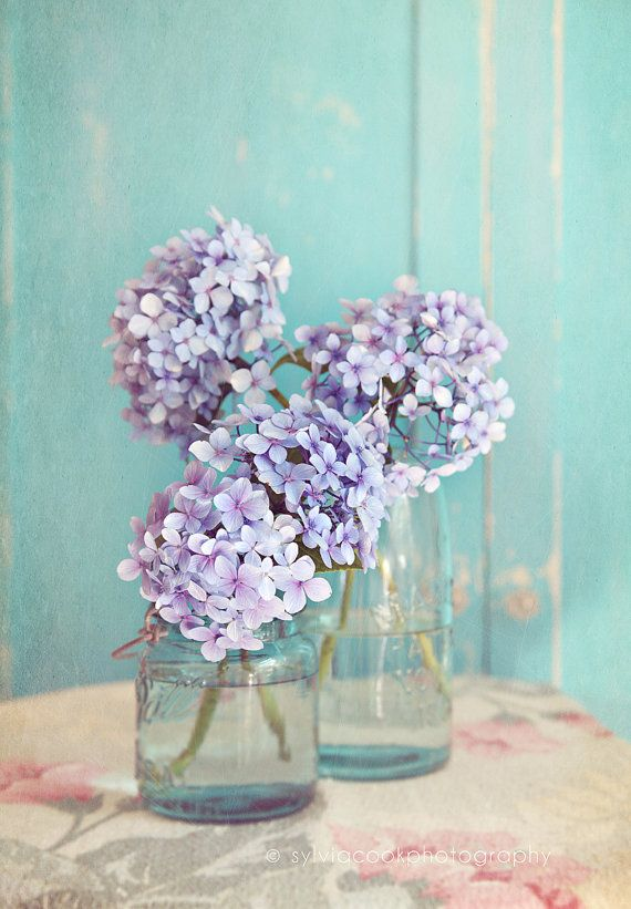 Shabby chic home decor Hydrangeas in mason by VintageChicImages, $15.00