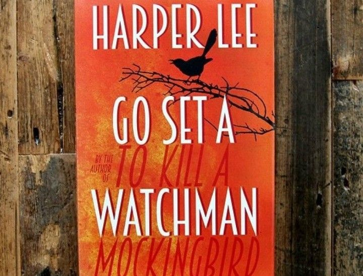 Reviewers are calling Harper Lee's new novel 'disturbing'.