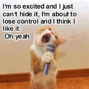 6a7b2a92888dd34eba797a2ad0be8ccc tired funny funny cute cats 29 best karaoke images on pinterest karaoke funny, karaoke and,Karaoke Meme
