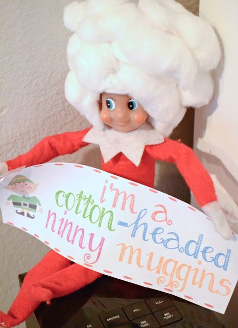 elf on the shelf cotton headed ninny muggins