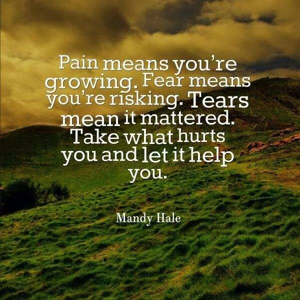 Pain means you're growing. Fear means you're risking. Tears mean it mattered. Take what hurts you and let it help you ☼ Mandy Hale