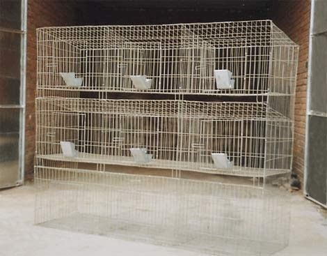 9 cells-3 layers mother rabbit cage