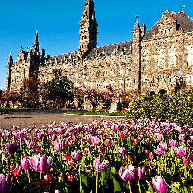 Georgetown University: My daughter is getting her Master's Degree in Museum Studies from here 2016-2017