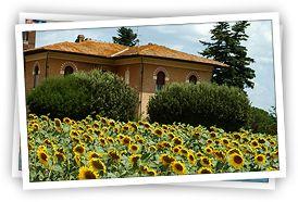 www.CaseVacanza.it | Annunci case vacanze. Offerte affitti ville e appartamenti vacanze, agriturismi