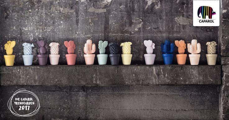 decken Sie die Welt von Caparol und lassen sich von unseren Produkten inspirieren.