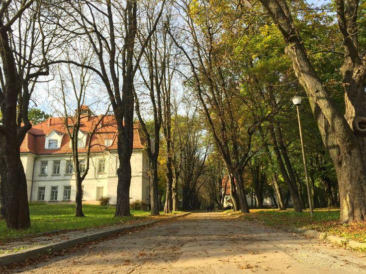 Jesienny spacer w… Kobierzynie