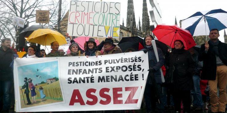 À Bordeaux la population se mobilise contre l'usage excessif et dangereux des pesticides dans l'agriculture