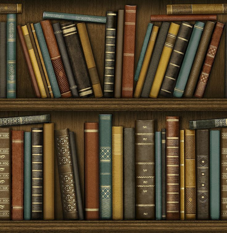LIBRARY BOOKSHELF REALISTIC BOOKCASE WALLPAPER POB