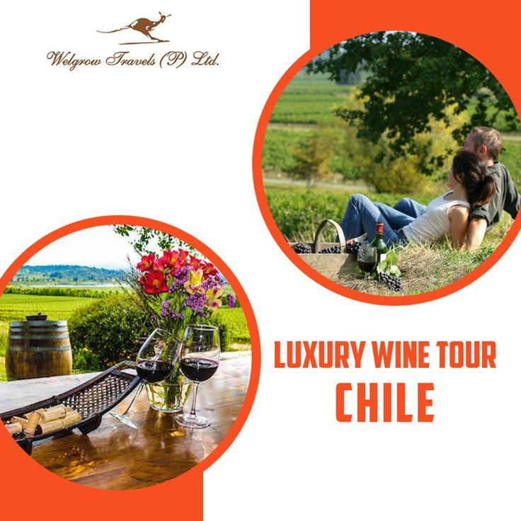 Luxury #WineTour, #Chile  Experience the extensive cultural offerings of Chile, while you sample some of the best #wines of this beautiful country. Begin your trip in #Santiago, where you can glimpse the perfectly balanced colonial architecture of the city and visit the erstwhile home of famous poet #PabloNeruda.   Explore Chile with our Luxury #WineTourPackages, go through our Itineraries at: www.welgrowgroup.com/wine/experience-chile  #WelgrowTravels #LuxuryTravel #Destinations #LuxuryTrip…