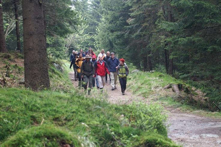 Auf dem Goetheweg   Quelle: Harzer Tourismusverband (c)