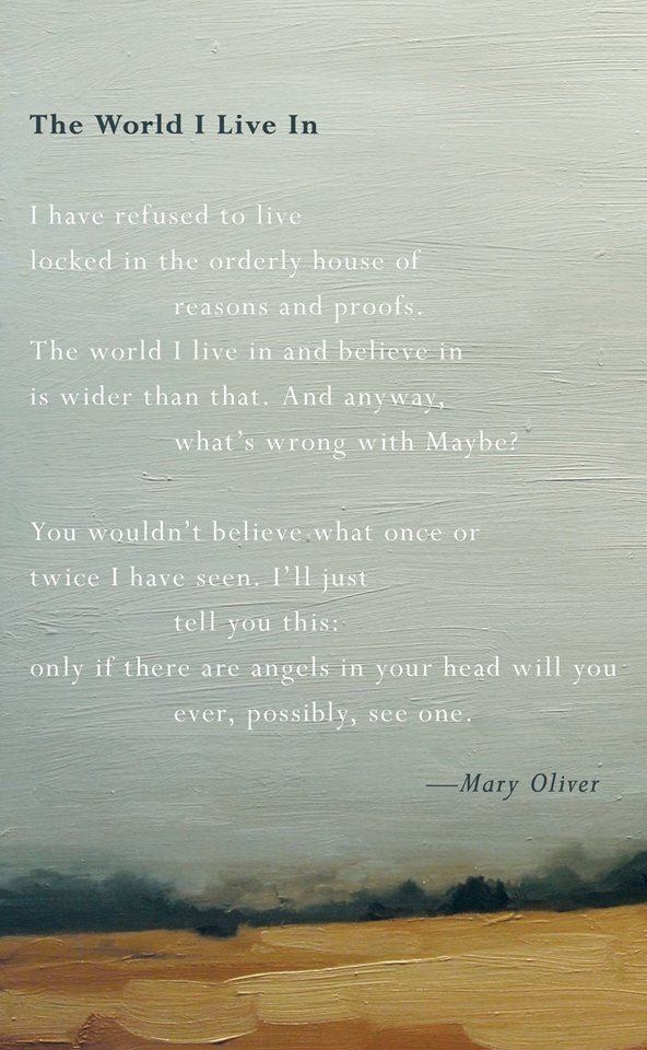Mary Oliver - only if there are angels on your head will you ever, possibly, see one.