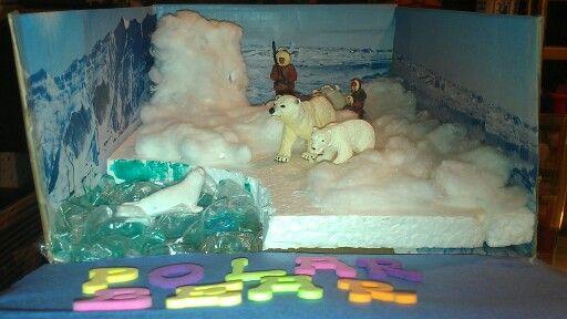 K's 1st grade habitat project: Polar bear habitat diorama