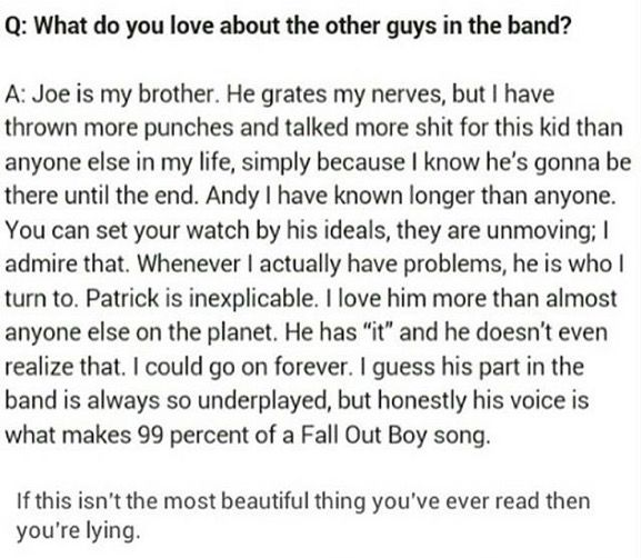 Aww this is adorable! Fall Out Boy members from Pete's perspective
