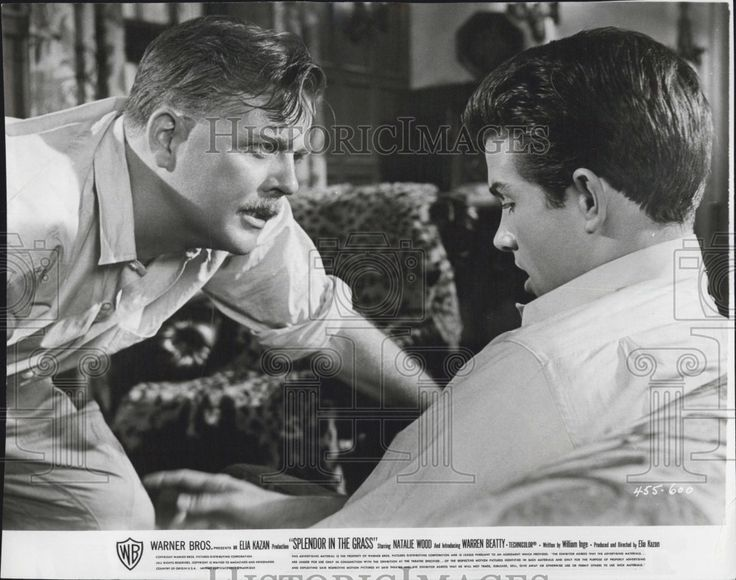 Today (July 19th) is Pat Hingle's birthday! He played Ace Stamper in Splendor in the Grass (1961).