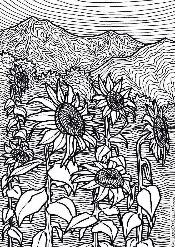 Sunflowers Colouring Page Coloring