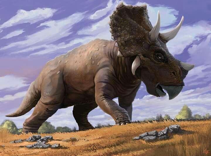 Triceratops Art By Alexey Eremeev ArtStation