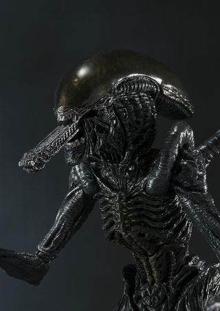 AVP Alien Warrior S.H. Monster Arts Action Figure