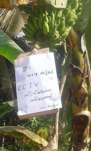 WhatsApp Malayalam Funny Pic ~ WhatsApp Jokes, Puzzles ...