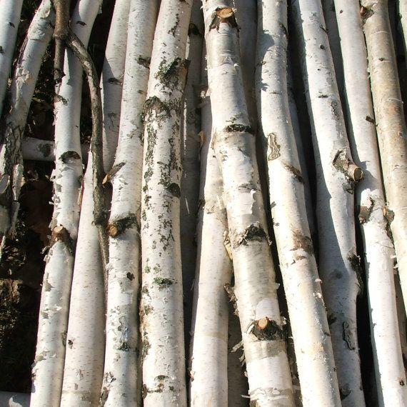 Birch Poles by blueskiesforever on Etsy, $79.95