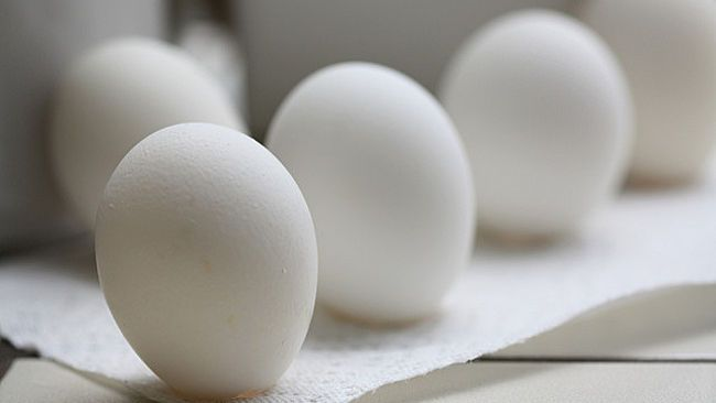 """Can you really balance an egg on its end during the vernal equinox?   This myth is only partly true. It is possible to balance an egg on its end, but it has nothing do to with the vernal equinox. In fact, it can be performed on any day of the year. To stand the egg on its end, try using a rough surface or an egg that has a bumpy end for better balance. Millie added, """"the ancient Chinese celebrated the first day of spring about six weeks earlier than the equinox, meaning that the recreation…"""