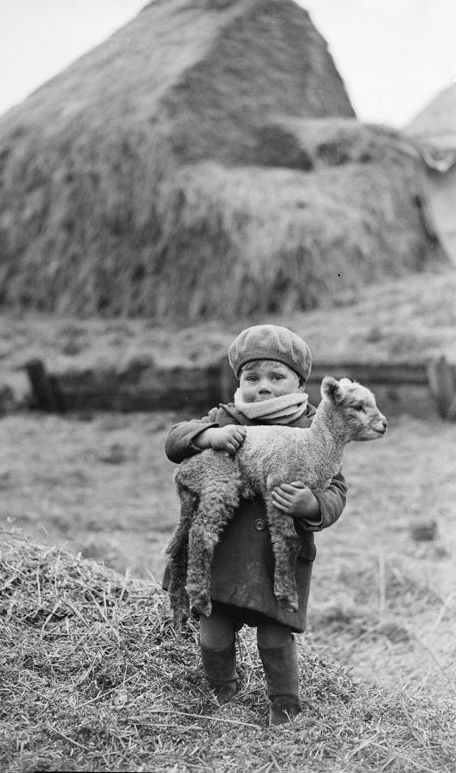 +~+~ Vintage Photograph ~+~+  Adorable little boy carrying a lamb, 19 February 1932 by James Jarché