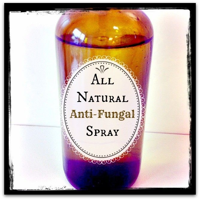 Did you know that you can make your own anti-fungal spray right at home? And, it's just two ingredients!