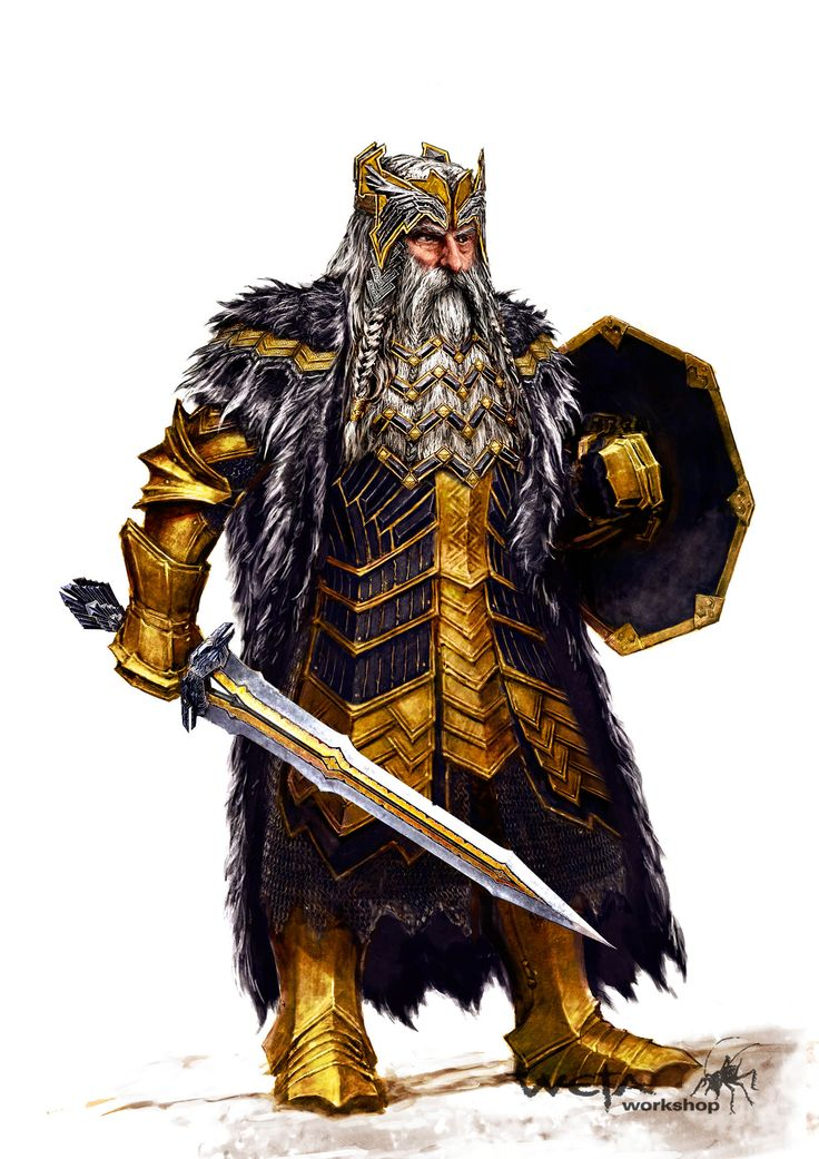 m Dwarf Paladin Plate Shield Helm Sword thror armor
