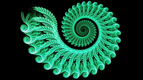fibonacci within fibonacci