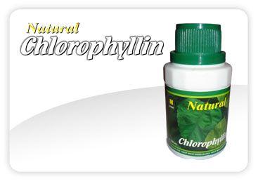 Chlorophyllin Suplemen Penetral Racun Tubuh Alami Natural Chlorophyllin terbuat dari daun CAWI yang mengandung chlorophyll acid yang mampu menyaring dan membersihkan racun-racun, karena tenaga penyerapan dari resin daun CAWI sangat kuat dan cocok digunakan sebagai fisioterapi, pembersih toksin dan mengikat oksidator dalam tubuh agar manusia bisa sehat dan berumur panjang. Daun CAWI sangat kaya mineral, Vitamin dan Protein.