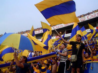 Club UANL Tigres Futbol Supporters and Fans