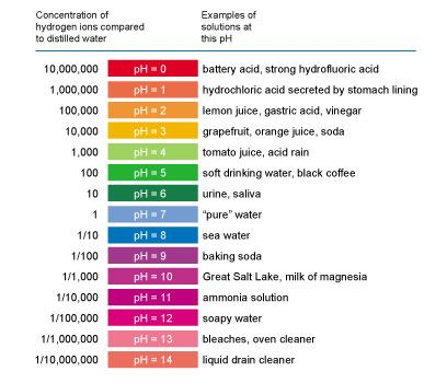 ph scale diagram  Google Search | My Classroom | Science