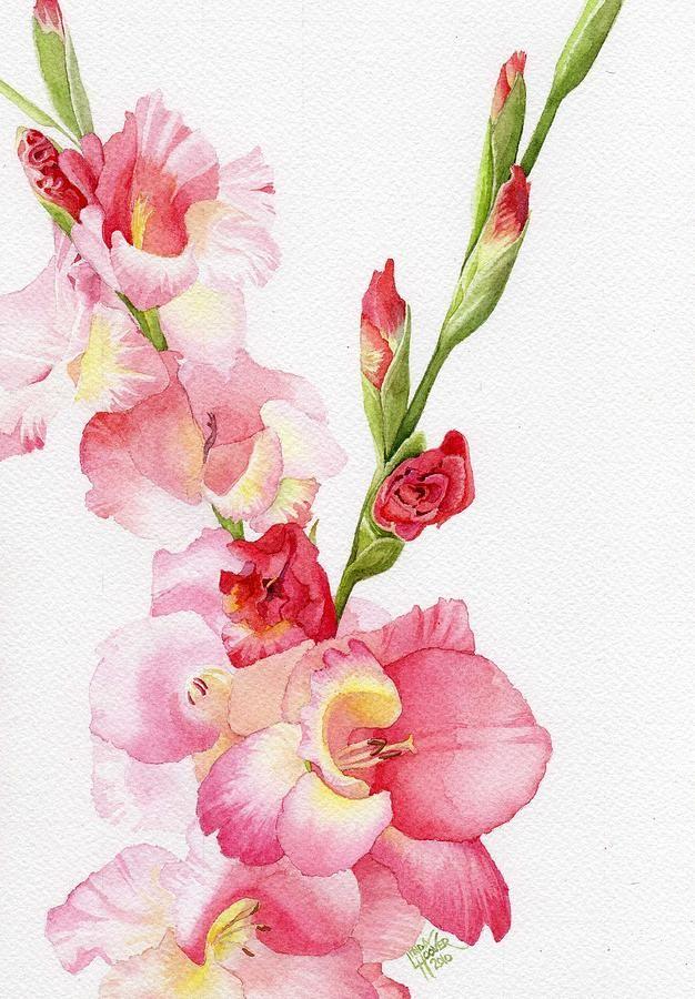 Pink Gladiola Painting by Linda Hoover