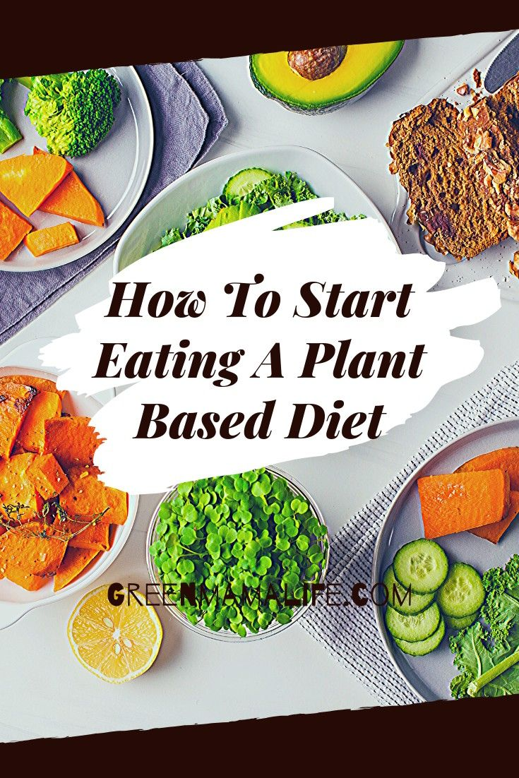 All You Need To Know About The Plant Based Diet In 2020 Plant Based Diet Plant Based Eating Plant Based