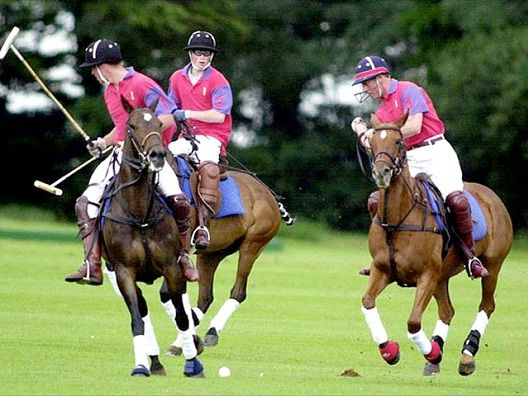 Polo-Most Expensive Sports In The World