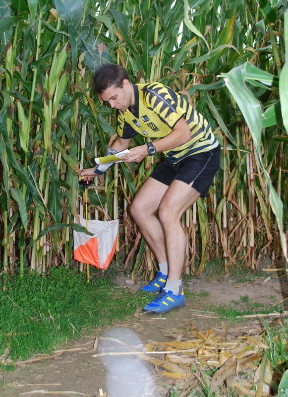 Orienteering in a cornfield: map and pictures