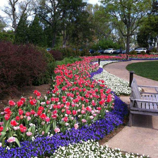 Soo390 com for Spring bulb garden designs