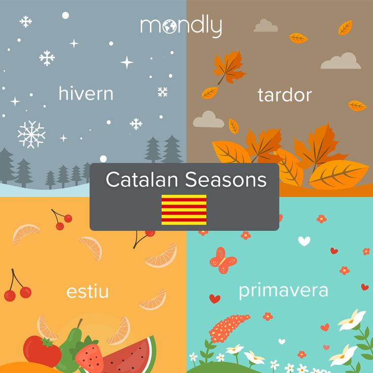 Don T Forget That Mondly Can Also Teach You Catalan Here S A Sneak Peek M In 2021 Learn Languages Online Learn Turkish Language Learning Languages