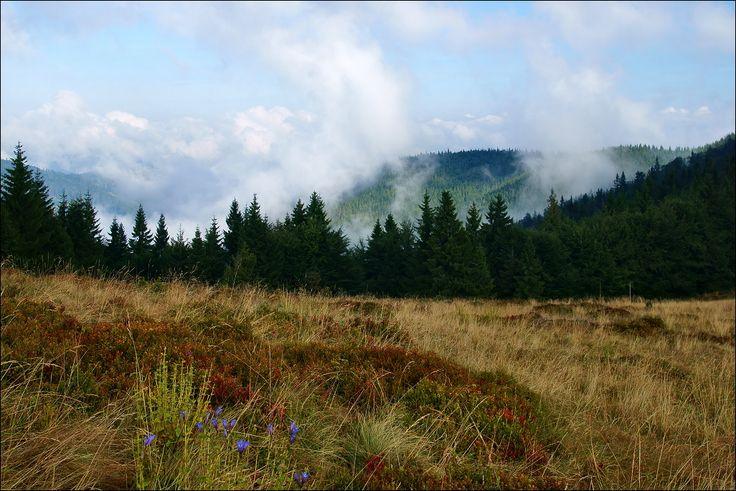 Dla spóźnialskich ponownie została aktywowana oferta Groupon! Musisz odwiedzić piękne o każdej porze roku Beskidy! :) Znajdziecie ją tu: http://travel.groupon.pl/29246060