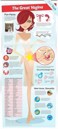 Ever wondered about the female reproductive organ? Get all the answers along with stats and trivia about women's unmentionable bits.