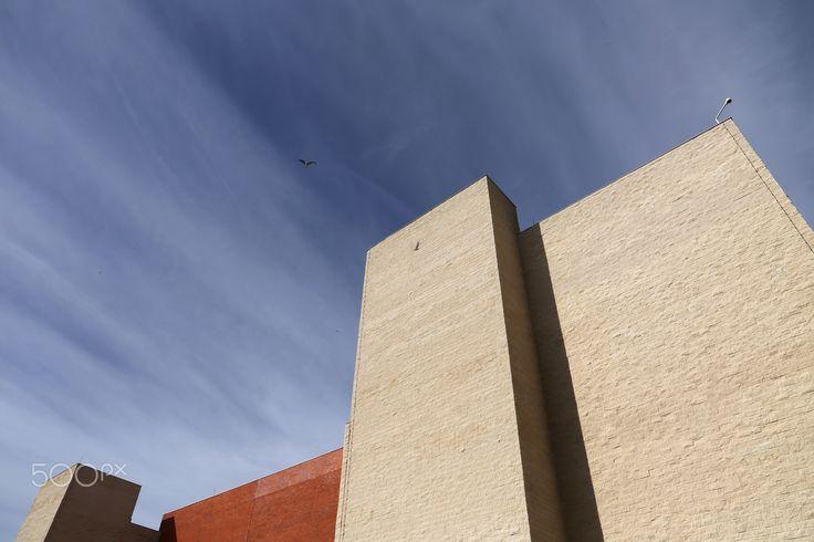 Sky lines - Centro de Artes e Espectaculos.  Figueira da Foz