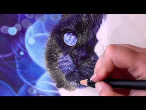 how to draw black fur with colored pencils