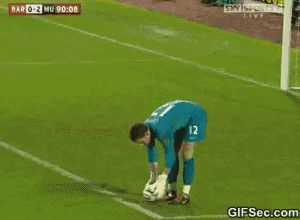GIF: Soccer Fans Goal at the Barnsley - www.gifsec.com